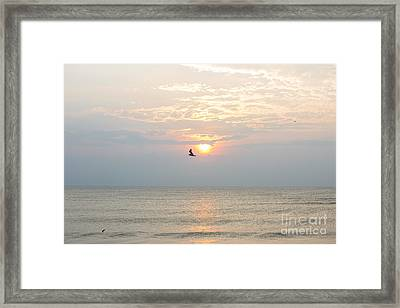 Fly Free Framed Print by Kay Pickens