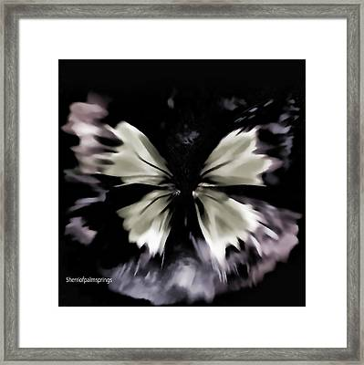 Butterfly Art  Fly Free Little Butterfly Framed Print by Sherri  Of Palm Springs