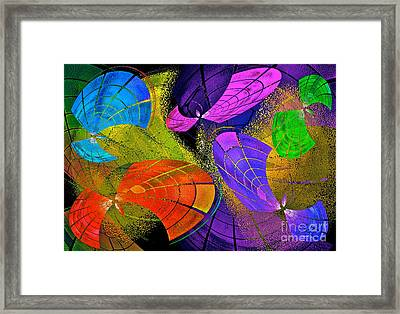 Flying Colors Framed Print by Gwyn Newcombe