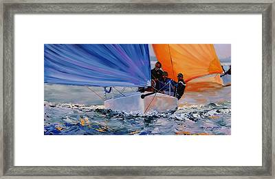 Flying Colors Two Framed Print by Laura Lee Zanghetti