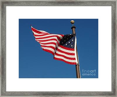 Flying High Framed Print by Dawn Gilbert Rikard