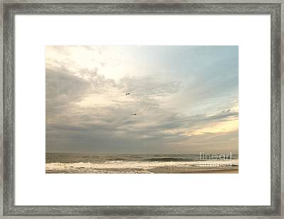 Flying Home  Framed Print by A New Focus Photography