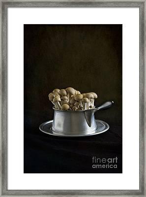 Flying Saucer Framed Print by Elena Nosyreva