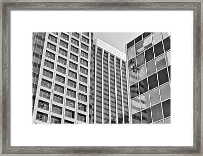 Flying Solo Framed Print by Trever Miller