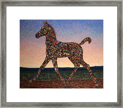 Foal Spirit Framed Print by James W Johnson
