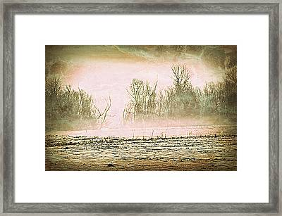 Fog Abstract 1 Framed Print by Marty Koch