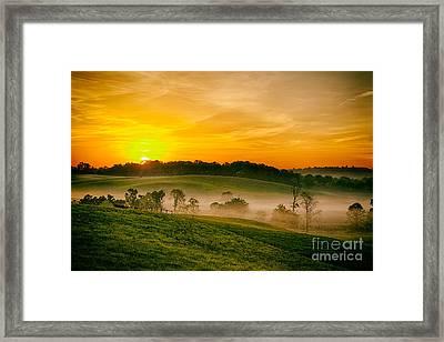 Fog Farms And Fields II Framed Print by Dan Carmichael