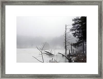 Fog On The Beaver Pond Framed Print by David Simons