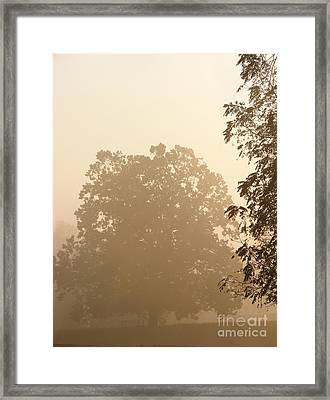 Fog Over Countryside Framed Print by Olivier Le Queinec