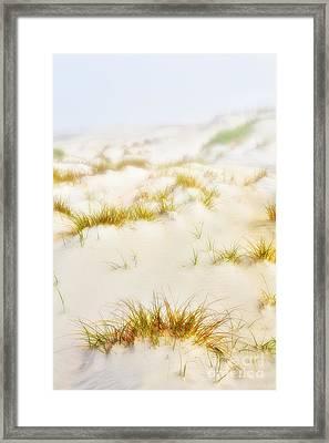 Fog Sand And Dune Grass - Outer Banks Framed Print by Dan Carmichael