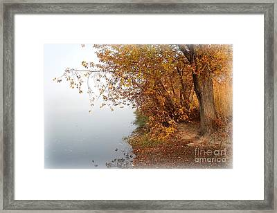 Foggy Autumn Riverbank Framed Print by Carol Groenen