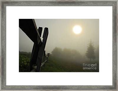 Foggy Country Road Framed Print by Lois Bryan