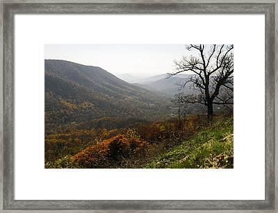Foggy Fall Morning Framed Print by Lynn Bauer