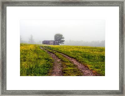Foggy Morning Framed Print by Bob Orsillo