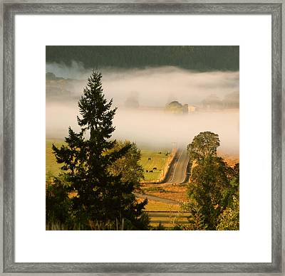Foggy Morning Drive Framed Print by Katie Wing Vigil