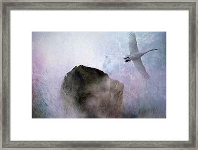 Foggy Morning Framed Print by Gun Legler