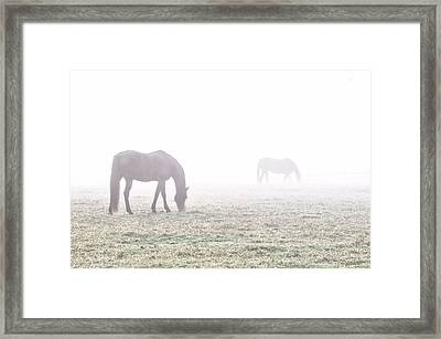 Foggy Morning  In Flourtown Framed Print by Bill Cannon