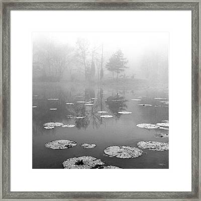 Foggy Morning Framed Print by Wendell Thompson