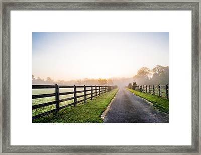 Foggy Path At Sunrise Framed Print by Shelby  Young