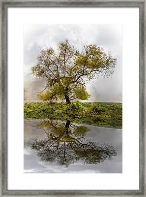 Foggy Reflections Framed Print by Debra and Dave Vanderlaan