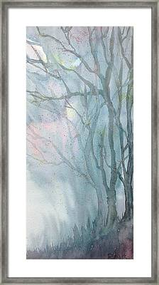 Foggy Trees Framed Print by Rebecca Davis