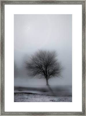 Foggy Winter Night Framed Print by Bill Wakeley