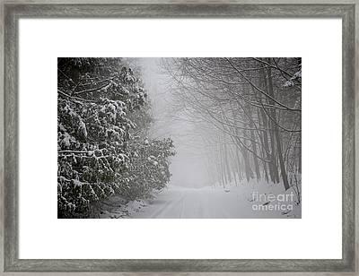 Foggy Winter Road Framed Print by Elena Elisseeva