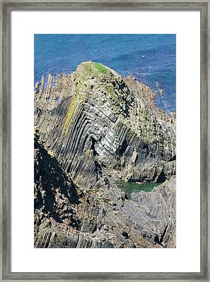 Folding In The Rocks Near Hartland Point Framed Print by Ashley Cooper