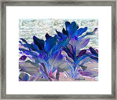 Foliage Fantasia Framed Print by Asok Mukhopadhyay