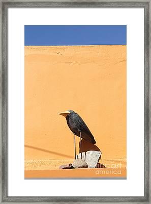 Folk Art Crow Todos Santos Framed Print by Linda Queally