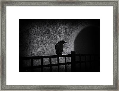 Follow Framed Print by Bob Orsillo
