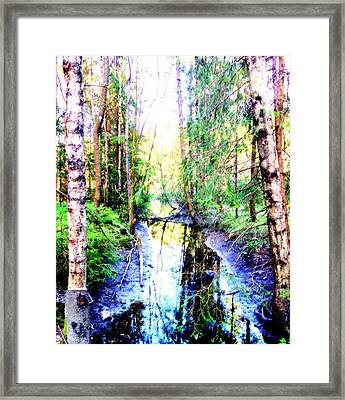 Follow The Stream And Get Lost In The Wilderness  Framed Print by Hilde Widerberg
