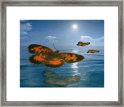 Follow The Sun Framed Print by Jack Zulli