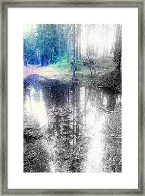 I Follow Your Path Through The Forest  Framed Print by Hilde Widerberg