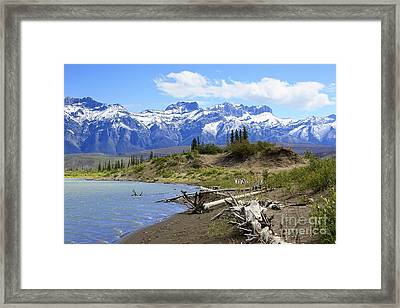 Following The Athabasca River Framed Print by Teresa Zieba