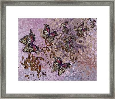 Following The Breeze Framed Print by Jack Zulli