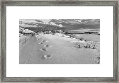 Footprints Framed Print by JC Findley