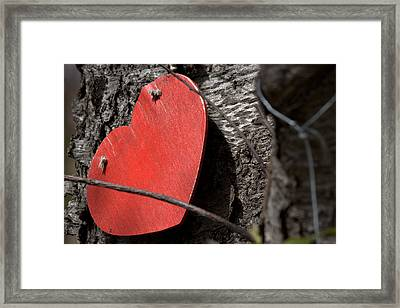 For As Long As I Live You Will Be In My Heart Framed Print by Steven Macanka