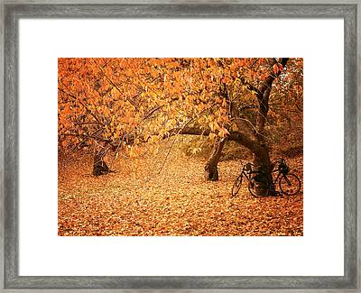 For Two - Autumn - Central Park Framed Print by Vivienne Gucwa