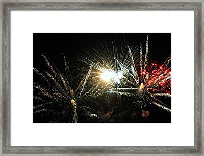 For United We Stand Framed Print by Diana Angstadt