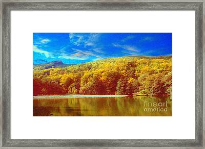 Forest And A Lake Framed Print by Odon Czintos