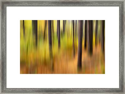Forest Fire Framed Print by Bill Wakeley