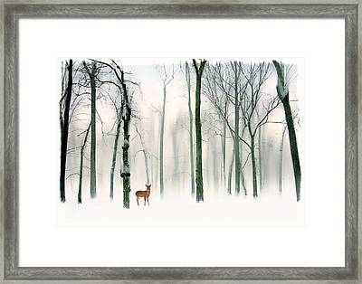 Forest Friend Framed Print by Jessica Jenney