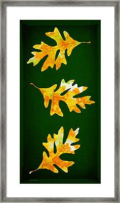 Forest Green Autumn Oak Leaf Painting Framed Print by Christina Rollo