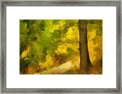 Autumn Forest Impression Framed Print by Lutz Baar