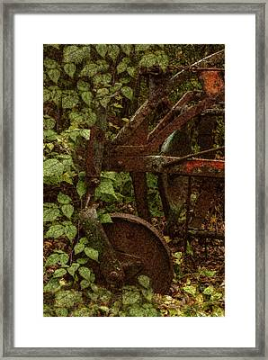 Forest Reclaimed Framed Print by Jack Zulli