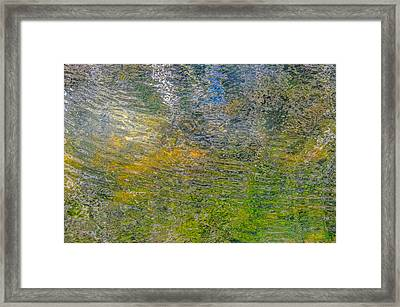 Forest Reflection Framed Print by Roxy Hurtubise