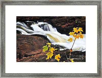Forest River In The Fall Framed Print by Elena Elisseeva