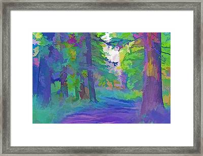Forest Road - Color Splash 2 Framed Print by Steve Ohlsen
