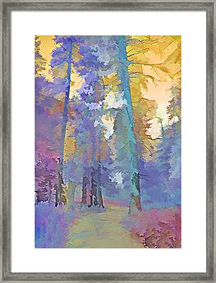 Forest Road - Color Splash 3 Framed Print by Steve Ohlsen